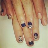 Leopard Halfs