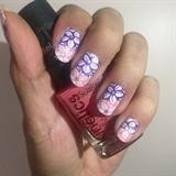 purple pink flowers