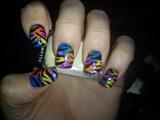 multi coloured zebra
