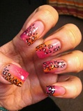 cheetah orange and pink