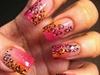 cheetah orange and pink