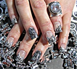 Zebra Glamour