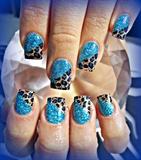 Leopard Blues