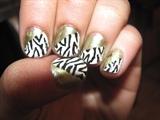 Gold Zebra