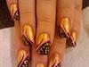 blk n gold leopard