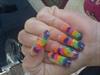 colored shells