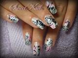 wild pink tiger