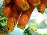 Gel Seashells