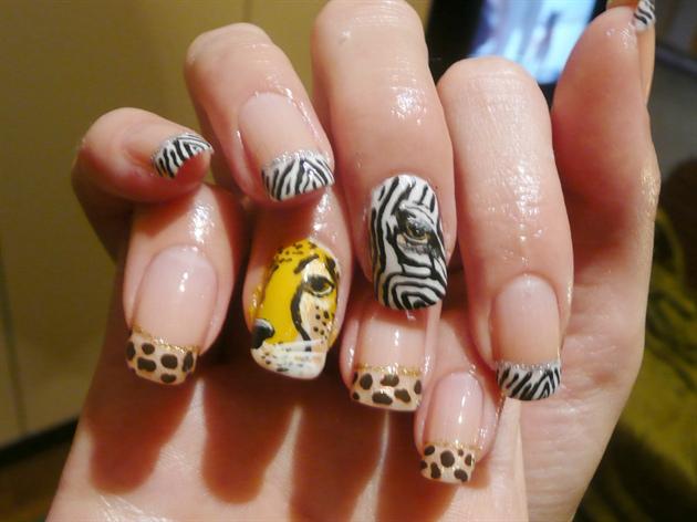 ~Zebra vs Cheetah~