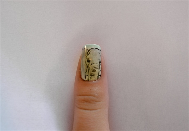 Africa - Thumb