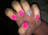 Neon pink & zebra