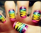 Color Zebra Print