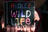 Hedley Wild Life Nail Art