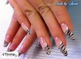 Zebra print <3