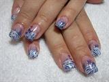 Blue Marbled Zebra