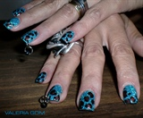 Leopardito Azul