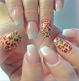 Ombré Pink and White w/ Leopard Print