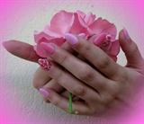 we love roses!!!