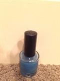 I Made My Own Nail Polish!!!!!