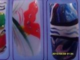 mariposa y colores en agua