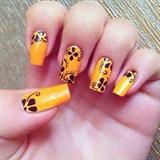 Orange tropic