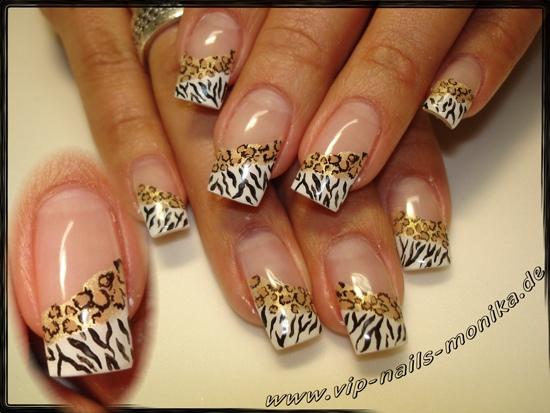 Zebra-Leo