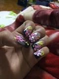 Black+Pink+Yellow+Glitters