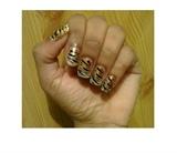 Zini Art Tiger Tiger Nails